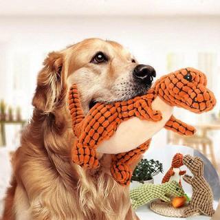 770+ Gambar Hewan Peliharaan Anjing Gratis Terbaru