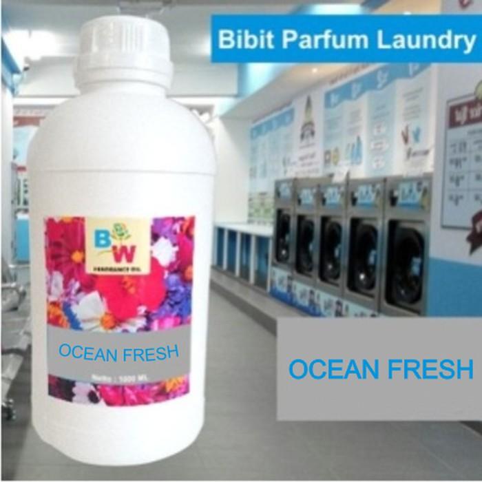 Bibit Parfum Laundry Ocean Fresh Shopee Indonesia