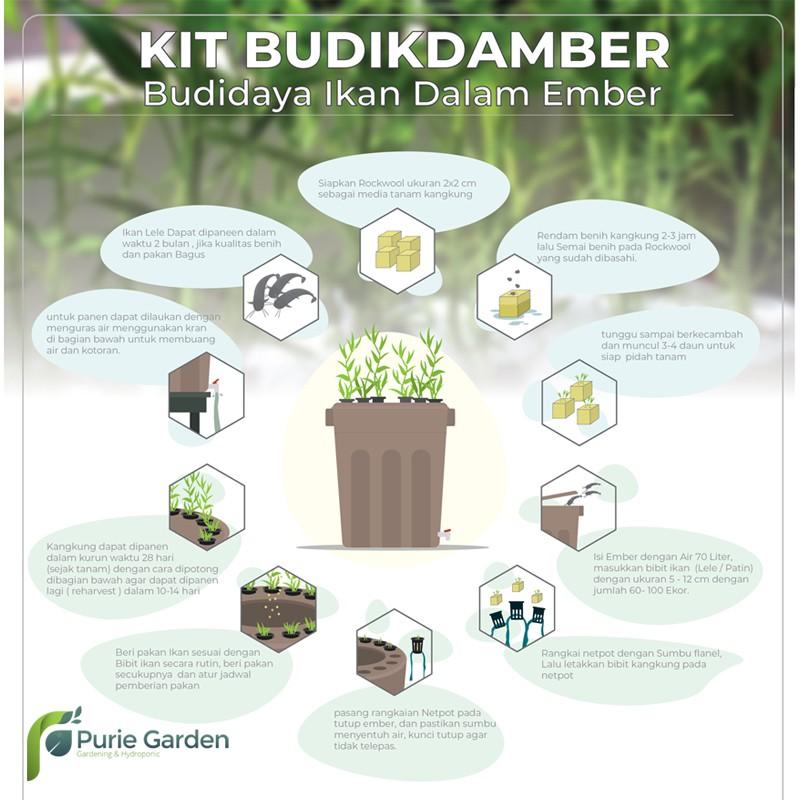 Paket Hidroponik Set Budidaya Ikan Dalam Ember Budikdamber Ikan Lele Dan Pakan Shopee Indonesia