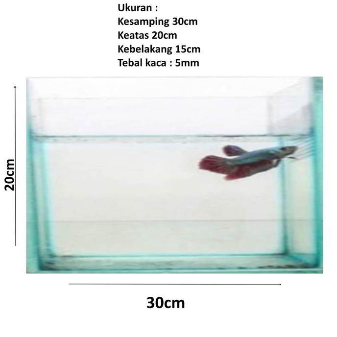 aquarium ukuran 30x20x15