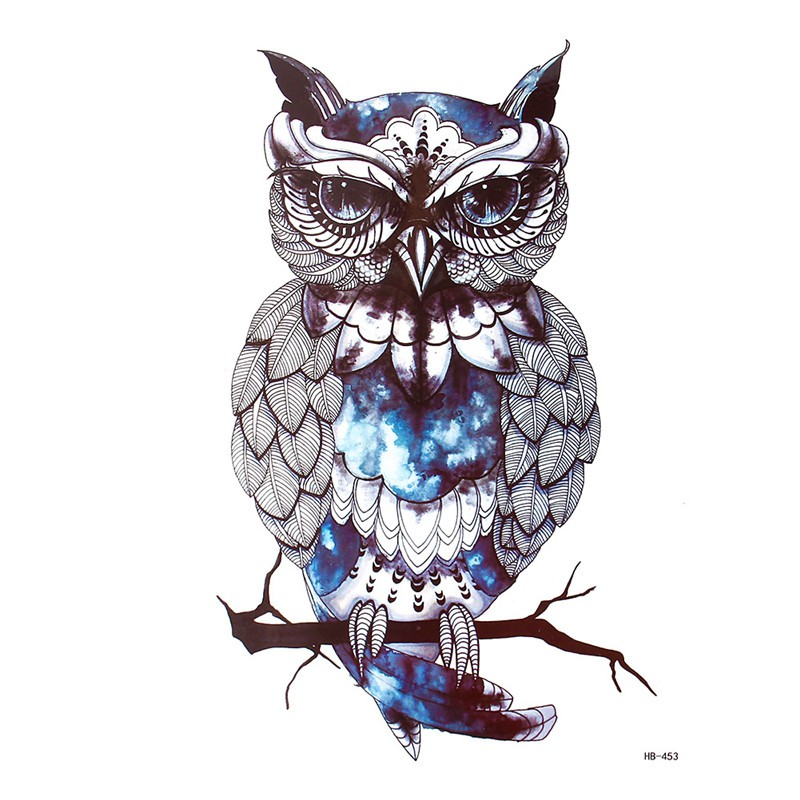 92+ Gambar Animasi Burung Hantu Keren Paling Bagus