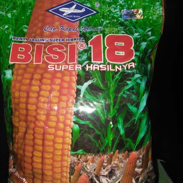 Menarik - Benih jagung hibrida Bisi 18 isi 1kg jagung bisi18 bibit jagung bisi 18