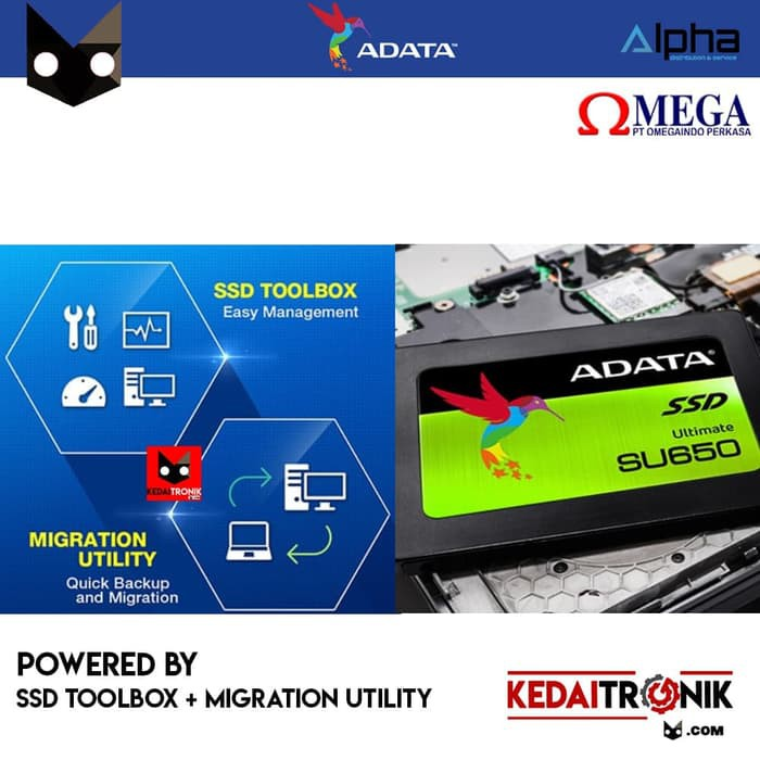SSD Internal ADATA SU650 Ultimate 240GB SU 650 3D NAND Flash SATA 240