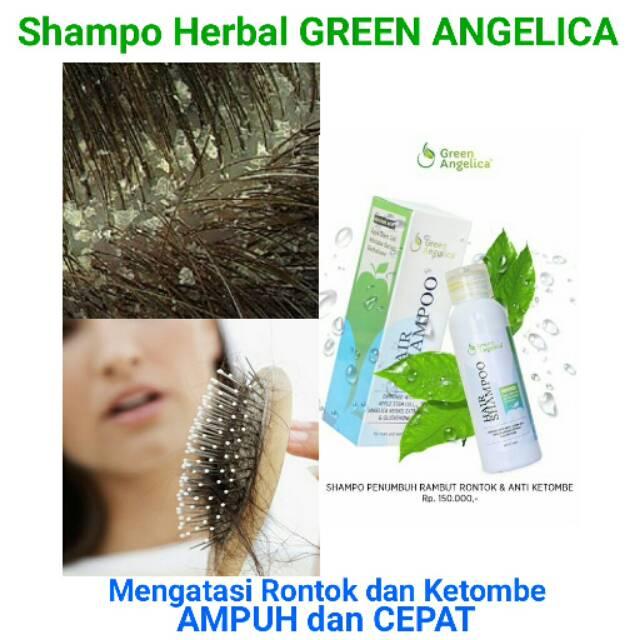 SHAMPO RAMBUT RONTOK DAN PENUMBUH RAMBUT ORANG INDONESIA 100% BERBPOM GREEN  ANGELICA ANTI KETOMBE  099c4d59e2