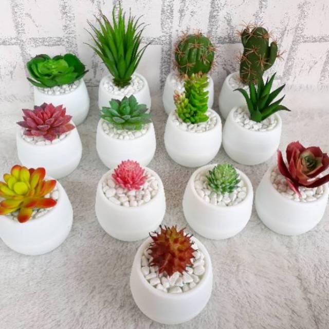 Kaktus Plastik Kaktus Artificial Sukulen Kaktus