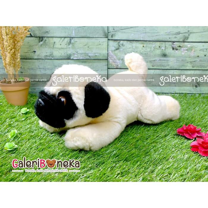 Boneka Anjing Pug  30c63f4841
