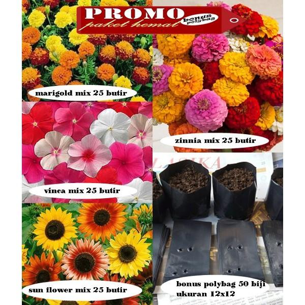 BIJI BENIH BUNGA FORGET ME NOT MIX BERISI 25 BUTIR3. promo benih bibit bunga matahari