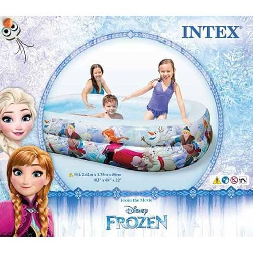 100 Gambar Rumah Frozen Ada Kolam Renang Terbaik