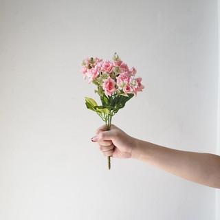 rose mekar kecil warna pastel / mini blooming pastel roses