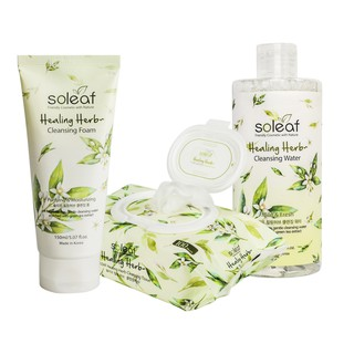 [BIG SALE 3pcs] Healing Herb Cleansing Foam+Cleansing Tissue+Cleansing Water thumbnail