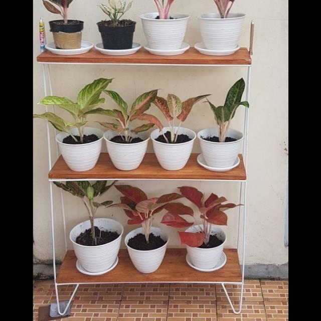 Rak Tanaman Hias Rak Pot Bunga Besi 3 Susun Tatakan Kayu Unik Shopee Indonesia