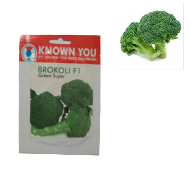 Bibit Sayuran Brokoli Hijau Hidroponik Media Tanam Polybag Isi 5 Benih Brokoli Hijau Murah Cod Shopee Indonesia