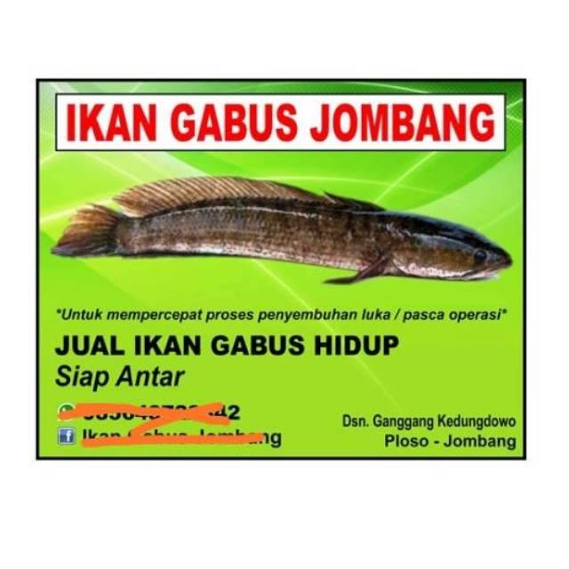 Contoh Spanduk Jual Beli Ikan - gambar spanduk