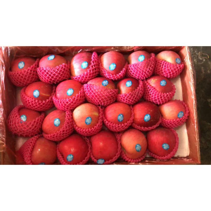 buah apel fuji / apel juice 1 dus