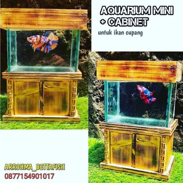 Aquarium Mini Kabinet Lemari Untuk Ikan Cupang Soliter Kaca Shopee Indonesia