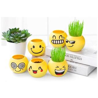 ☛tk☚ r067 pot bunga lucu gratis bibit mini motif emoticon