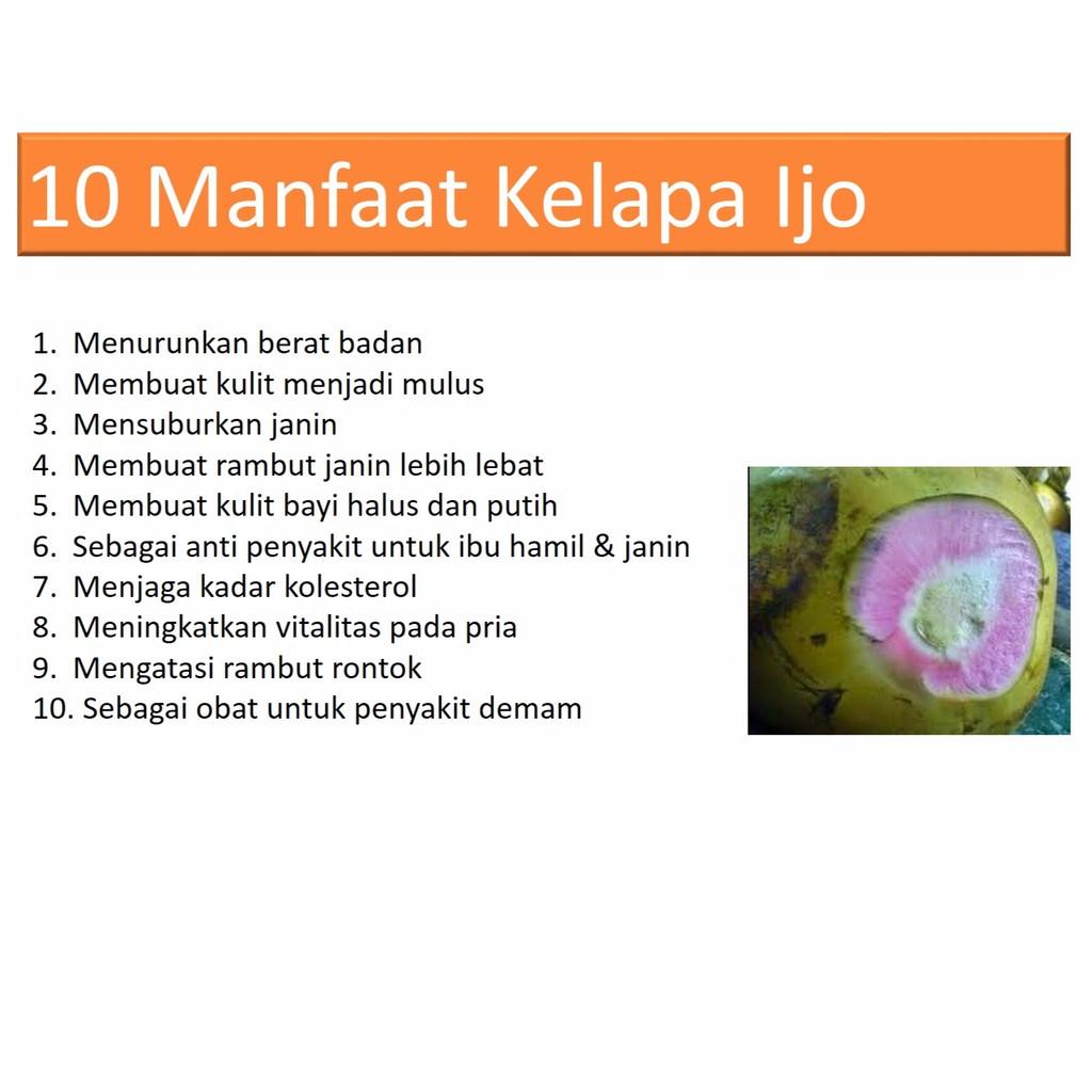 Air Kelapa Ijo Asli Kelapa Obat Shopee Indonesia