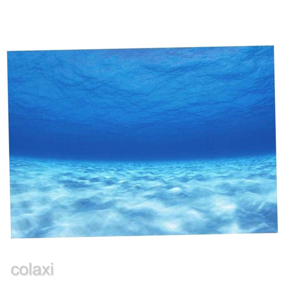 Poster Gambar Pemandangan Laut 3D Untuk Dekorasi