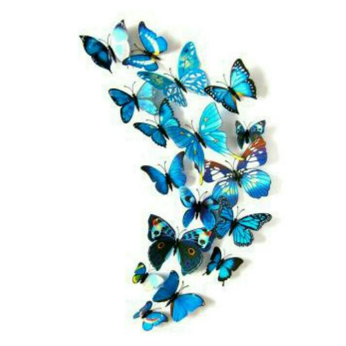 3d wall sticker butterfly pakai magnet stiker hiasan dinding kupu pvc | Shopee Indonesia
