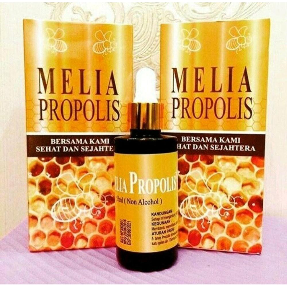 Promo Propolis 55 Ml Isi 2 Botol Murah Shopee Indonesia Moment Original Kemasan  1 Box 5