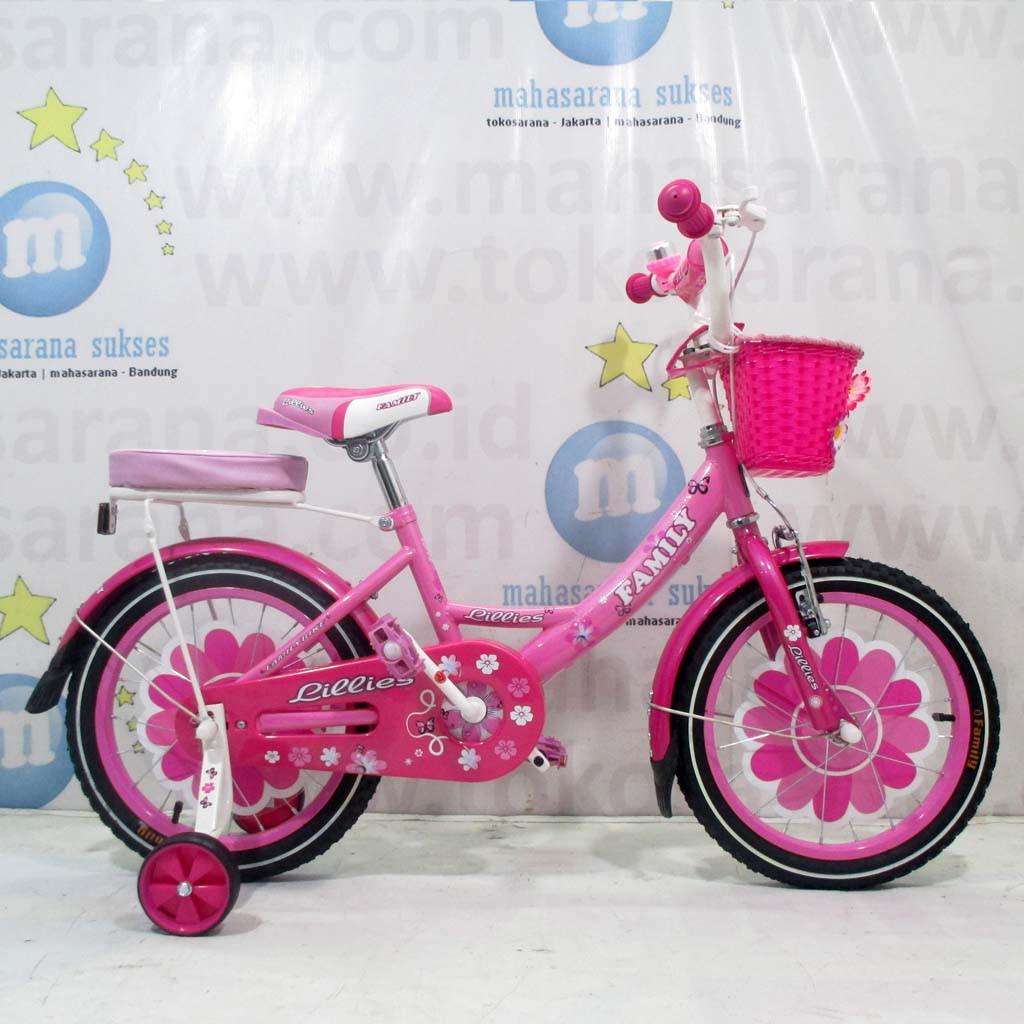 12 United Joyfull Ctb 2 4 Tahun Low Step Frame City Bike Sepeda Roda Bantu Samping Anak 16 Genio Perempuan Shopee Indonesia
