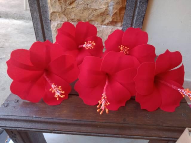 Bunga Pucuk Bali Kembang Sepatu Shopee Indonesia