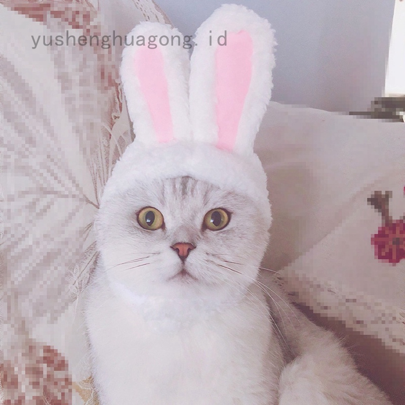Kostum Telinga Kelinci Dengan Topi Untuk Kucing Anjing Hewan Peliharaan Shopee Indonesia