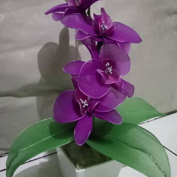 Limited Stock Bunga Anggrek Ungu Shopee Indonesia