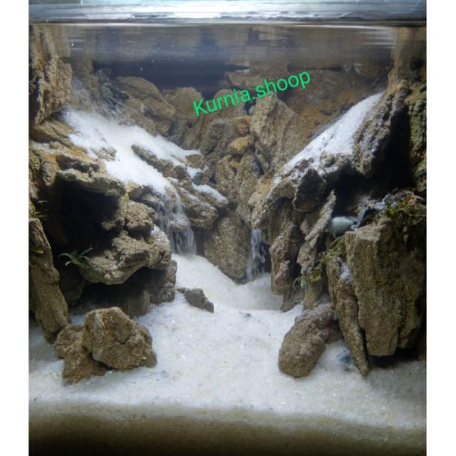 Aquascape Batu Pasir Hitam Desain Dekorasi Rumah