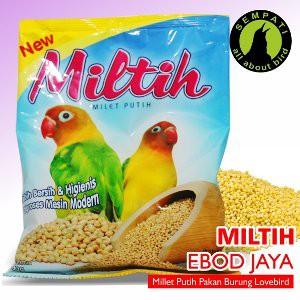Harga Spesial Pakan Burung Lovebird Miltih (Milet Putih) Kemasan Plastik Ebod Jaya Kicau Mania | Shopee Indonesia