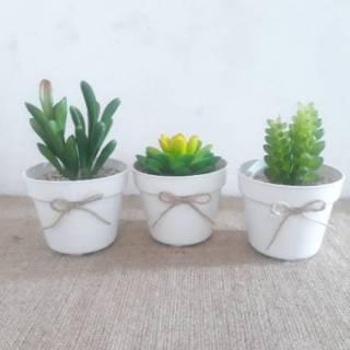 Set Bunga Plastik Kaktus Mini Dengan Pot Plastik
