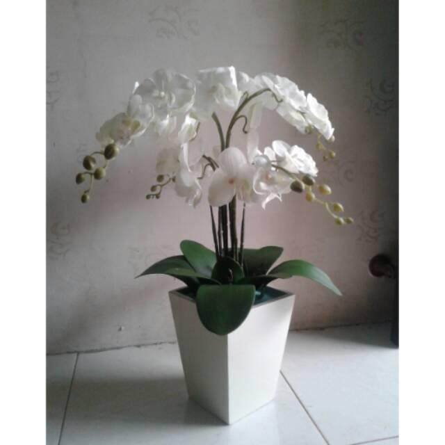 Bunga Anggrek Bulan Putih Isi 4tangkai Vas Kayu Putih Shopee Indonesia