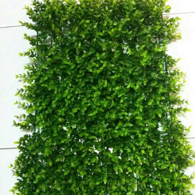 Karpet rumput / rumput artificial / rumput plastik / rumput petak /tanaman dinding / tanaman ...