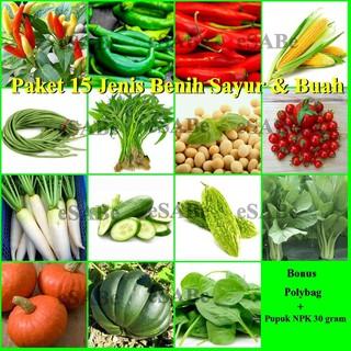 Paket Benih Biji 15 Jenis Sayuran Hidroponik Konvensional