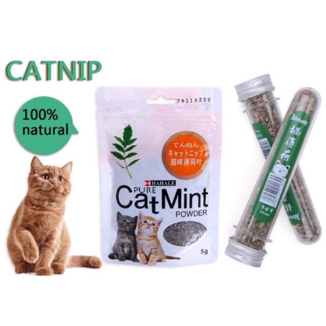Catnip Powder Bikin Kucing Fly Cat Mint Serbuk Catnip Daun Catnip Bubuk Catnip Kucing Makanan Kucing Shopee Indonesia