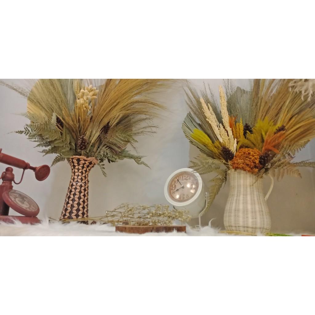 Bunga Baby S Breath Kering Set Kecil Cocok Untuk Bunga Buket Vas Bunga Dekorasi Rumah Murah Meriah Shopee Indonesia