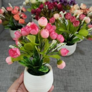 pot mini mawar kuncup egg rose telur dekorasi rumah