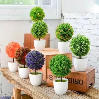 pot tanaman bunga dekorasi rumah tanaman hias plastik