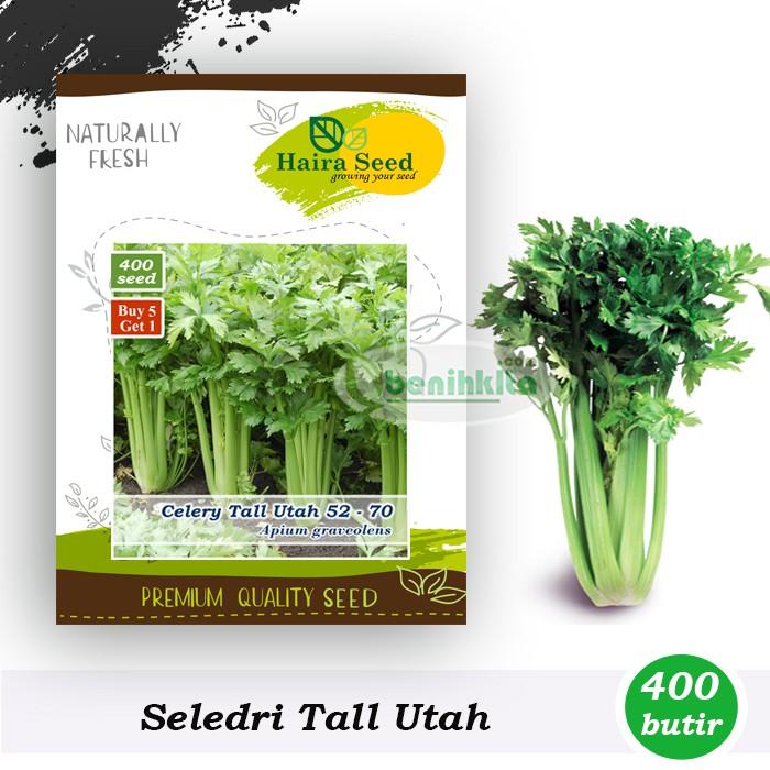 Amefurashi Bibit /Benih /Seed Herb Rosella Cocok Untuk Dijadikan Teh Mudah Tumbuh | Shopee Indonesia