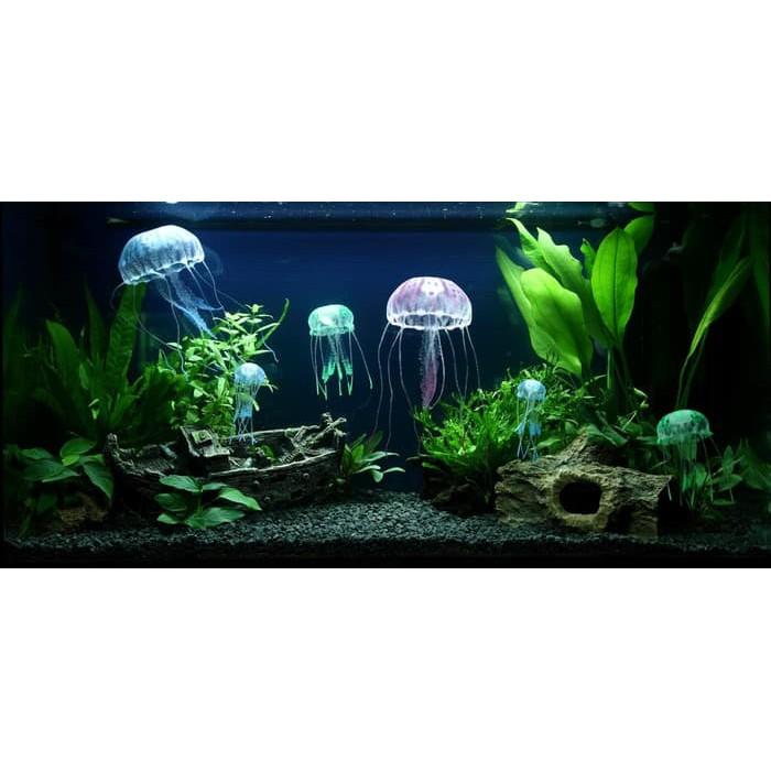 Paket Aquascape Hiasan Aquarium Aquascape Kit Paket Tanaman Starter Untuk Pemula Shopee Indonesia