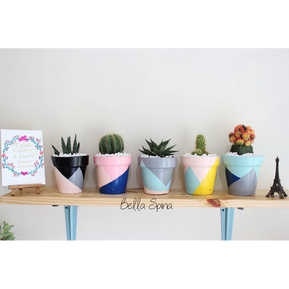 Best Seller Pot Clay Picasso Medium Size Ptm 08 Vas Bunga Kaktus Sukulen Shopee Indonesia