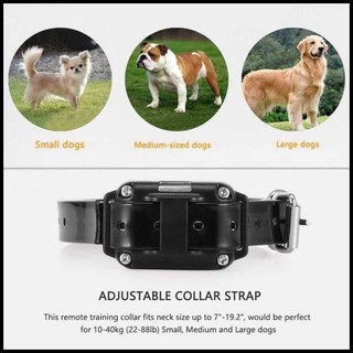 Pet Dog Training Shock Collar Stop Barking Device 1000 Meter Remote Shopee Indonesia
