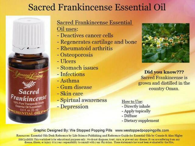 Sacred Frankincense Young Living Essential Oil Shopee Indonesia