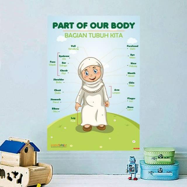 Poster Belajar Anggota Tubuh Tipe 03 Shopee Indonesia