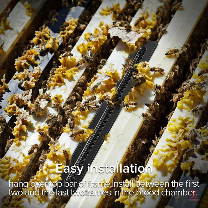 20pcs Small Bee Hive Beetle Blaster BeeHive Beetle Trap Beekeeping Tools