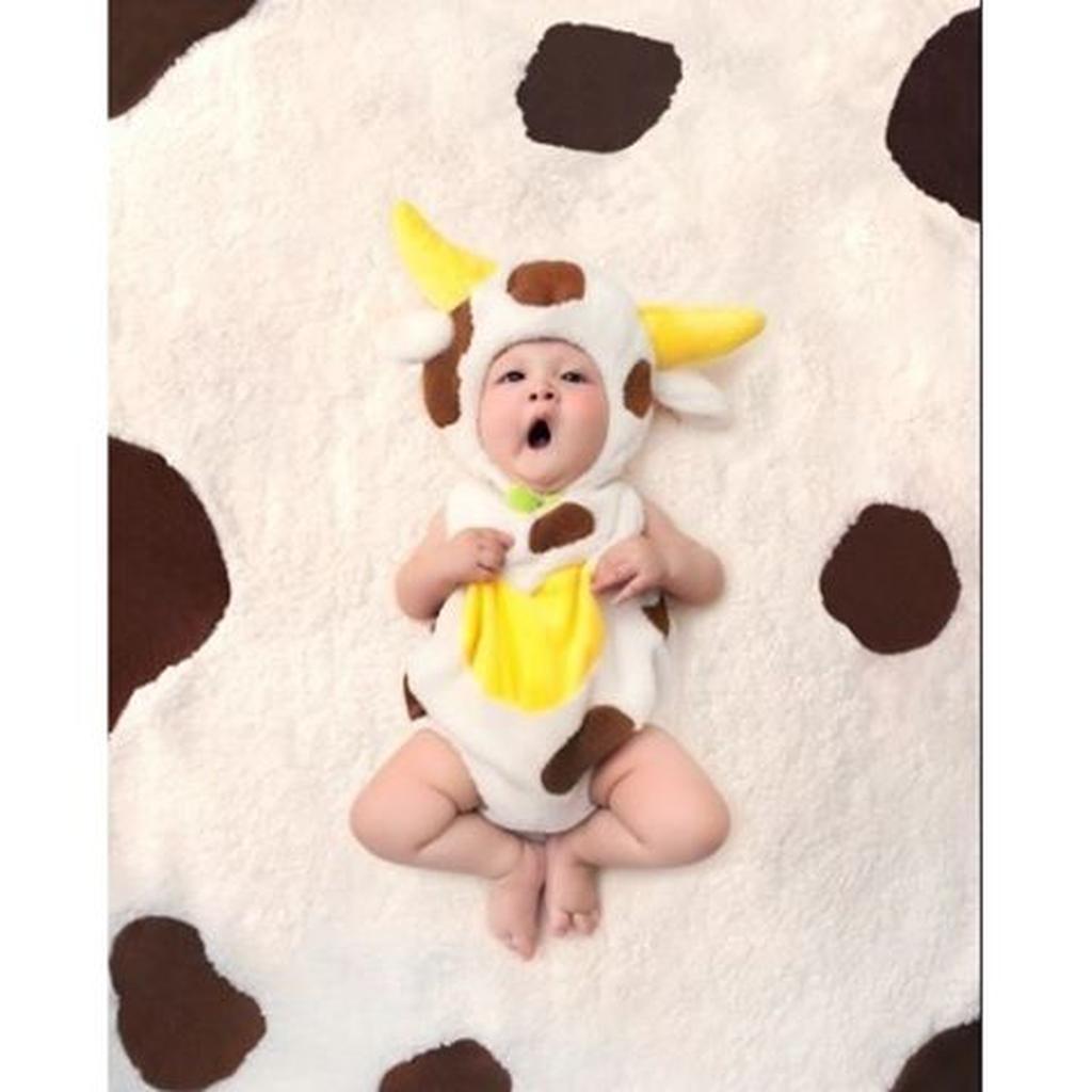 KOSTUM ANIMAL BAYI. LITTLE CALF. Baby costumes. kostum ...