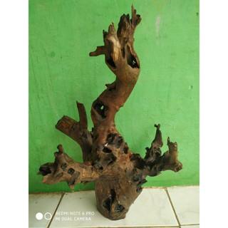 Driftwood Aquascape Berkarakter Ukuran Besar Shopee Indonesia