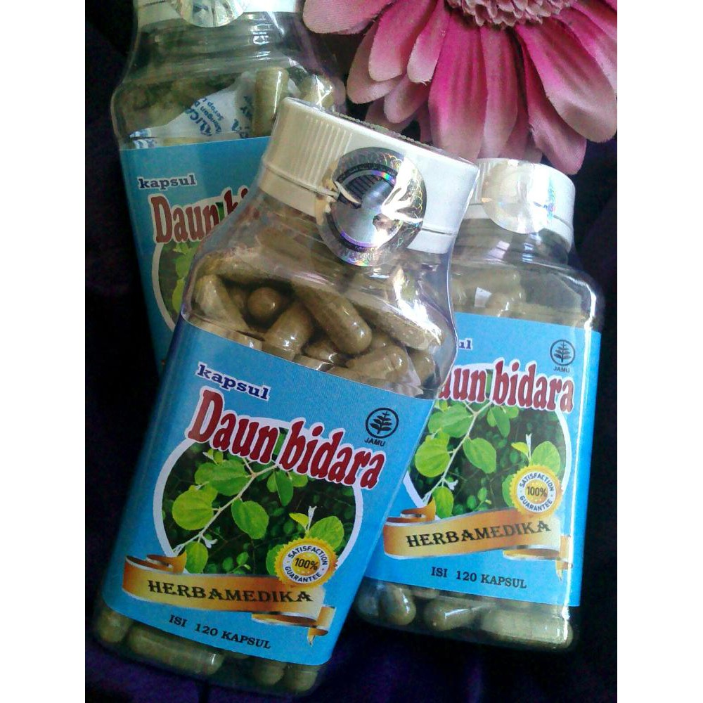 Kapsul Sambiloto Herbamedika Shopee Indonesia Green Coffee 120