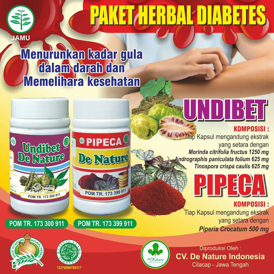 cara mengobati penyakit diabetes secara herbal