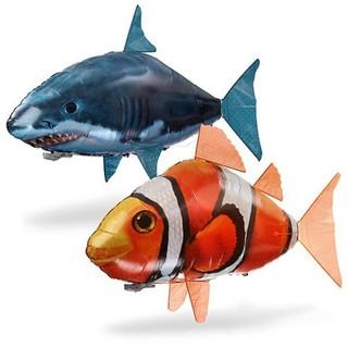 95 Gambar Ikan Hiu Terbang Terbaru